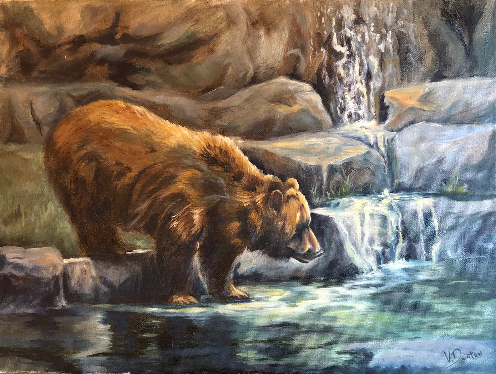 Bear Fishing Trip
