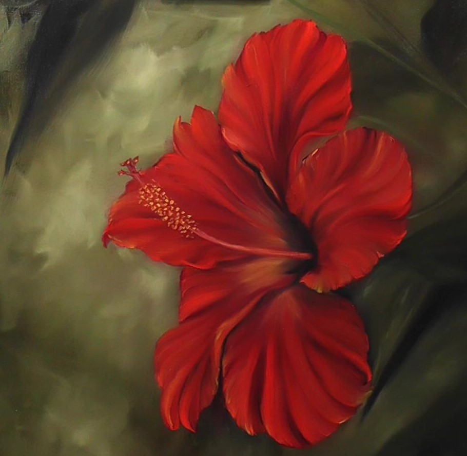 Ruby Red Hibiscus (Oils)